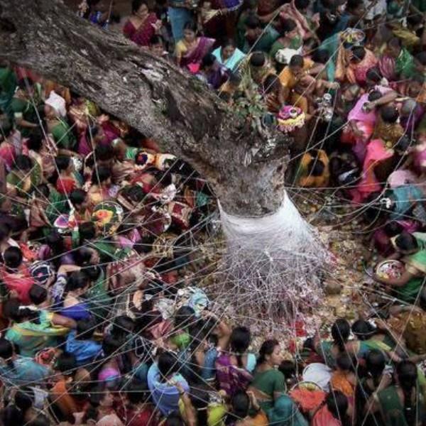 Vat Purnima - How to Perform Vrat Purnima Puja